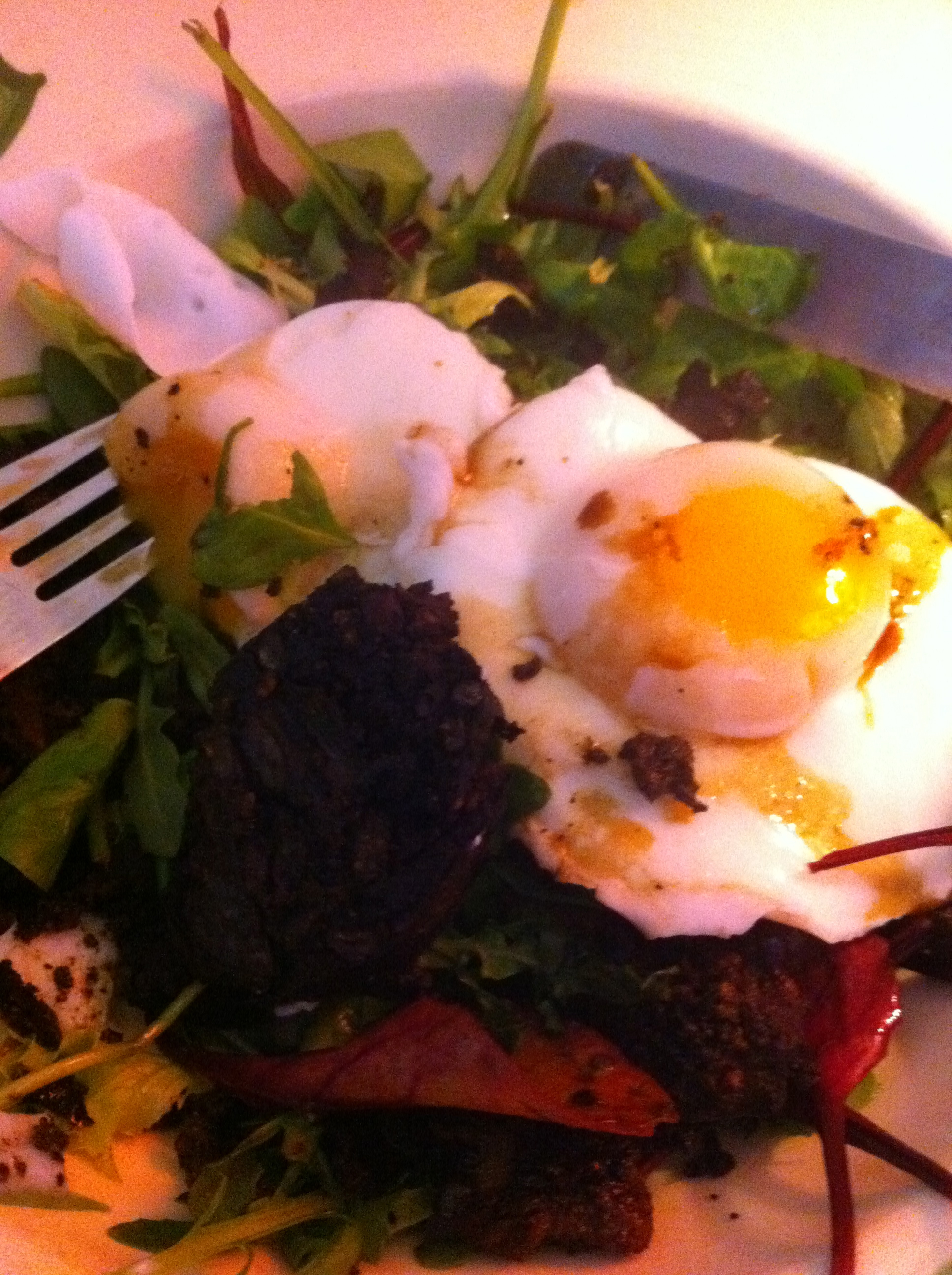 Black Pudding and Poached Egg Salad